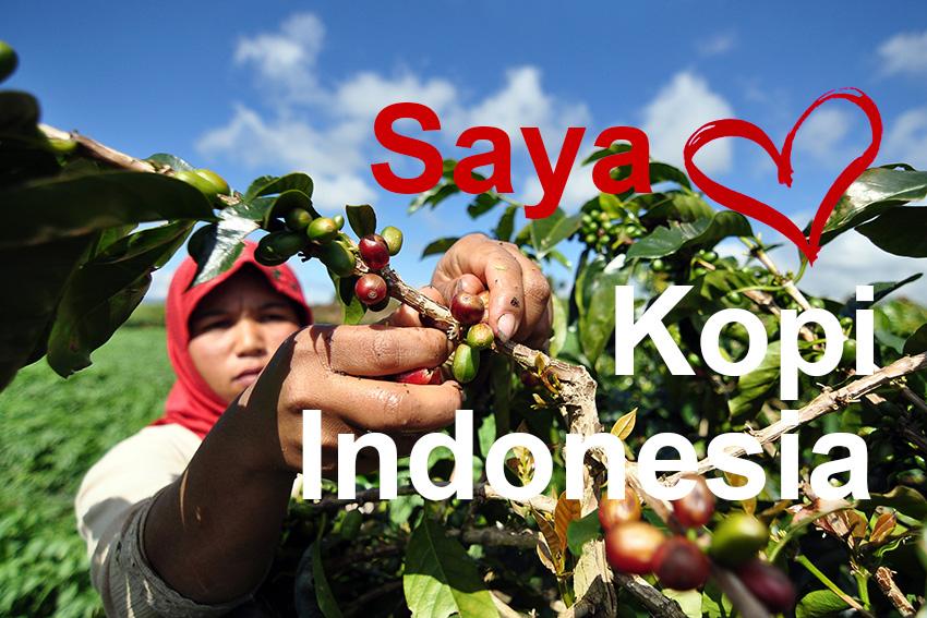 Saya Pecinta Kopi Indonesia